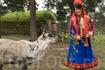 В гостях у саамов - коренного населения Северной Норвегии, губерния Финнмарк. Foto: Johan Wildhagen/Innovation Norway