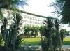 Фотография отеля Hotel Del Levante