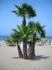 пляж El Duque