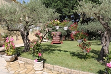 Территория вокруг винодельни Domaine Bouletin & Fils .
