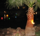 Египет.Hilton Waterfalls 5*(январь 2010год))