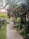 Фотография отеля Emerald Garden Resort