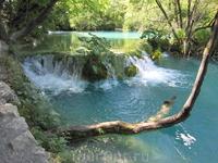 Плитвицкие озера (Хорватия)ю  Мы приехалаи в 7 утра , к открытию.  На озерах провели весь день. Самая длинная тропа в 14 км.