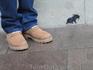 Мышку тоже удостоили внимания и памяти.