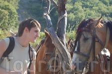 Езда на лошадях. Невербальное общение :P