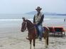 На лошадке можно покататься