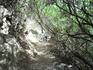 «Семь источников» является заповедным местом у Линдоса. Под тенью величественных сосен и многовековых платанов бегут ручейки и родники, которые соединяются ...