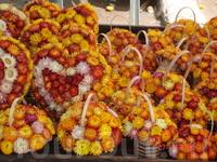 Сувениры из сухоцветов