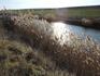 Еще несколько фоток заросшего камышами озера. Оно кстати совсем неглубокое, но вот берега довольно крутые и обрывистые