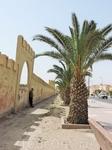 В XVI веке Тарудант был столицей Саадитов. Город был обнесен мощной стеной, прекрасно сохранившейся до наших дней