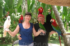 Бали/ парк птиц  очень понравился