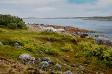Заяцкий остров - образец заполярной тундры.
