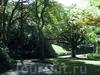 Фотография Веллингтонский Ботанический Сад