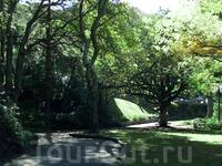 Веллингтонский Ботанический Сад
