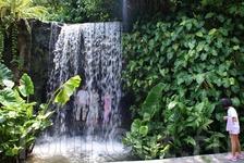 парк орхидей в Ботаническом саду