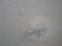 Тень нашего самолета