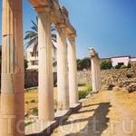колонны...пахнут историей
