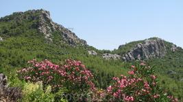 А в горах открываются красивейшие панорамы природы.