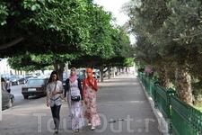 Молодые берберки(мароканки)