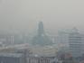Вместе с ёжиком пол-города не видать в тумане (августовском дыму от торфяников)