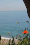 Пляж Калельи
