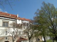 Вид на дворец со стороны сада на Валах
