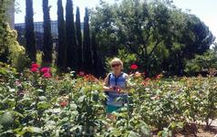 Розарий меньше того, что есть в Ретиро, но розы также хороши.
