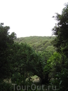 Прекрасная Коста-Брава. Часть II