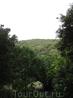 Вот такая красочная зелень в Ллорет де Маре в мае. Сады Св. Клотильды находятся на холме, однако сфотографировать  сам город не получается из-за пышной ...