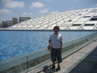 У Александрийской библиотеки
