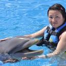 Доминикана. Купание с дельфинами