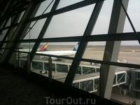 Необъятные просторы Шанхайского аэропорта...и хвост моего следующего самолета :):)
