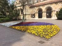 Газоны в Венгрии восхитительны по разнообразию и яркости красок