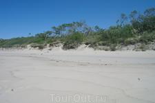 Дюны и песок кругом. Пока дюны не укрепили, песок двигался на поселки со скоростью 15 км в год.