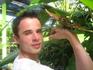 Огромная бабочка на ферме насекомых на Пхукете.такого мы еще не видели...