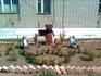 Здорово придумали украсить двор