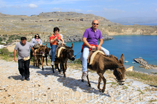 Наиболее простой способ подняться к Акрополю - это, конечно же, ослики. Особенно такой вид передвижения нравится иностранным туристам.