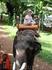 Каталась на слонике. От щастья была сама не своя ))