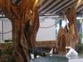 В таверне Hellas