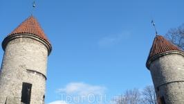 Вируские ворота были построены в XIV веке и сохранились до нашего времени лишь частично.