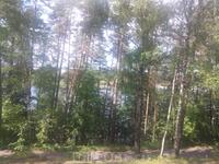 Вид с обещго балкона на соседнее озеро