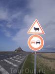 Вдалеке Мон Сен Мишель. К нему ведет двухкилометровая дамба, а вокруг пасуться овечки :)