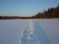 Февраль 2012г. Ясный морозный день.