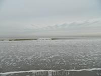 Вот и Северное море. Вода малосольная. Насобирал ракушек.