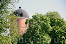 Купол Уппсальского Замка в кронах деревьев