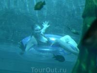 в аквапарке, прозрачный туннель в огромном бассейне с акулами, но после того как летишь с бешенной скоростью в темноте, это релакс