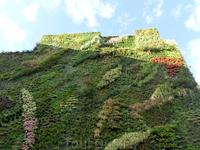 Благодаря скрытой системе ирригации, растения бодро себя чувствуют на этой стене.