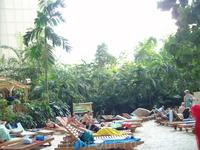 Около Берлина Tropical Island
