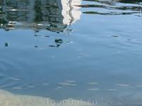 Рыбки в озере
