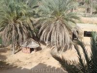 вид из окна в отеле в Сахаре